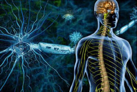 اكتشاف علمي يبعث الأمل لدى المصابين بمرض التصلب المتعدد
