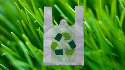 العلماء الروس يبتكرون حلا حاسما للنفايات البلاستيكية!