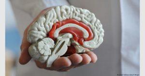 استخدام الهواتف الذكية يحدث تغييرات في كيمياء المخ بين الأطفال